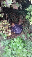 Fly Tipping Pic 3